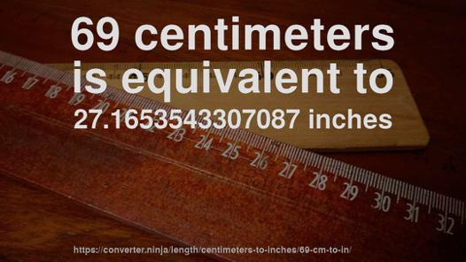 69 in in cm