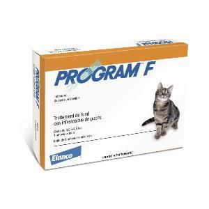 anti puce pour chat