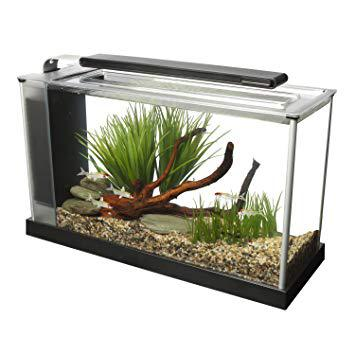 aquarium fluval
