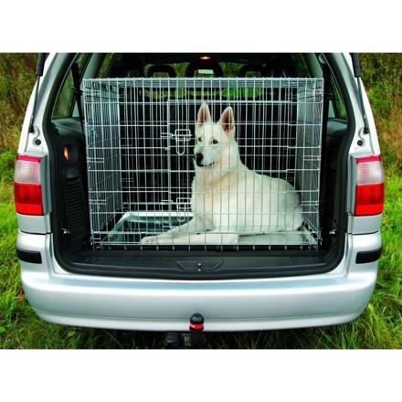 cage chien voiture