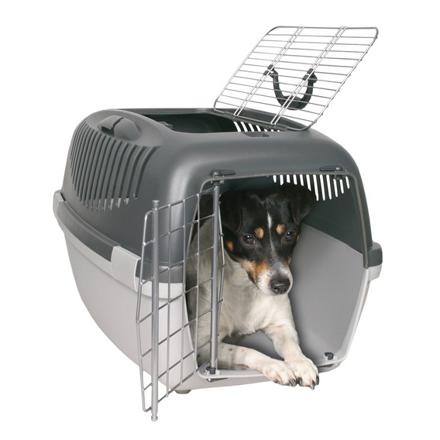 cage de transport pour petit chien