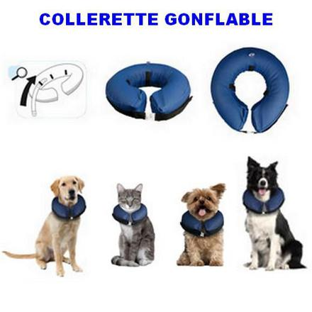 collerette chien gonflable