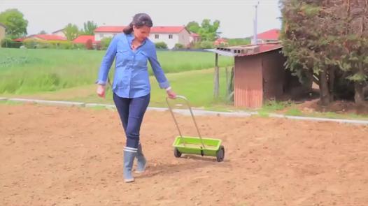comment semer du gazon
