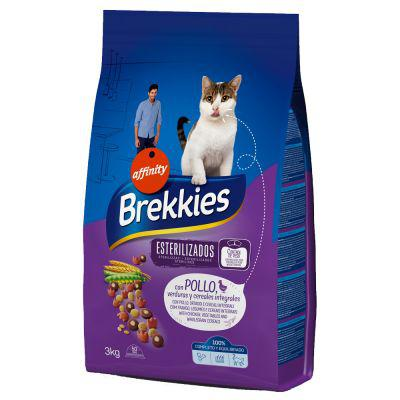 croquette brekkies chat