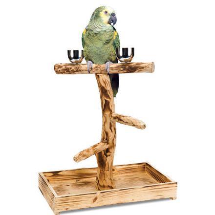perchoir pour perroquet