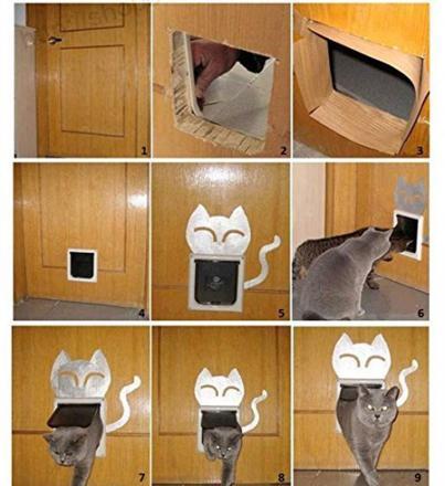 porte avec chatière