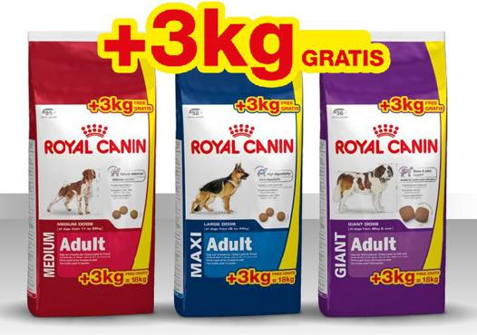 royal canin maxi adulte promo