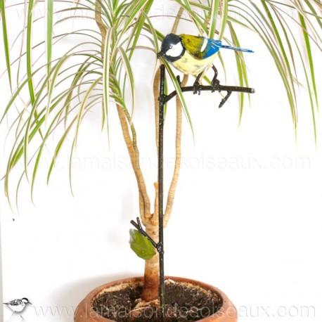 tuteur plante